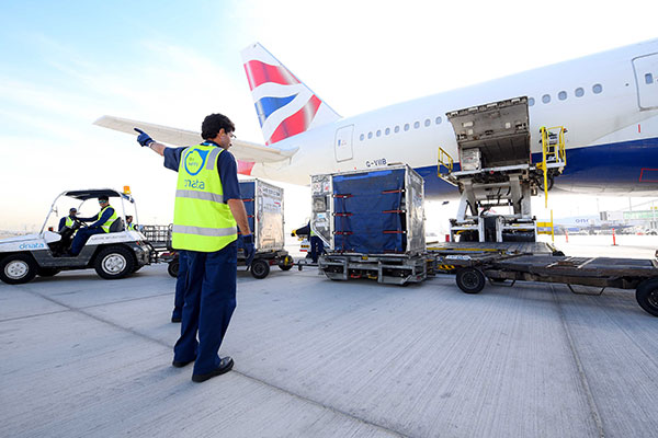 New Investment in Air Freight Services