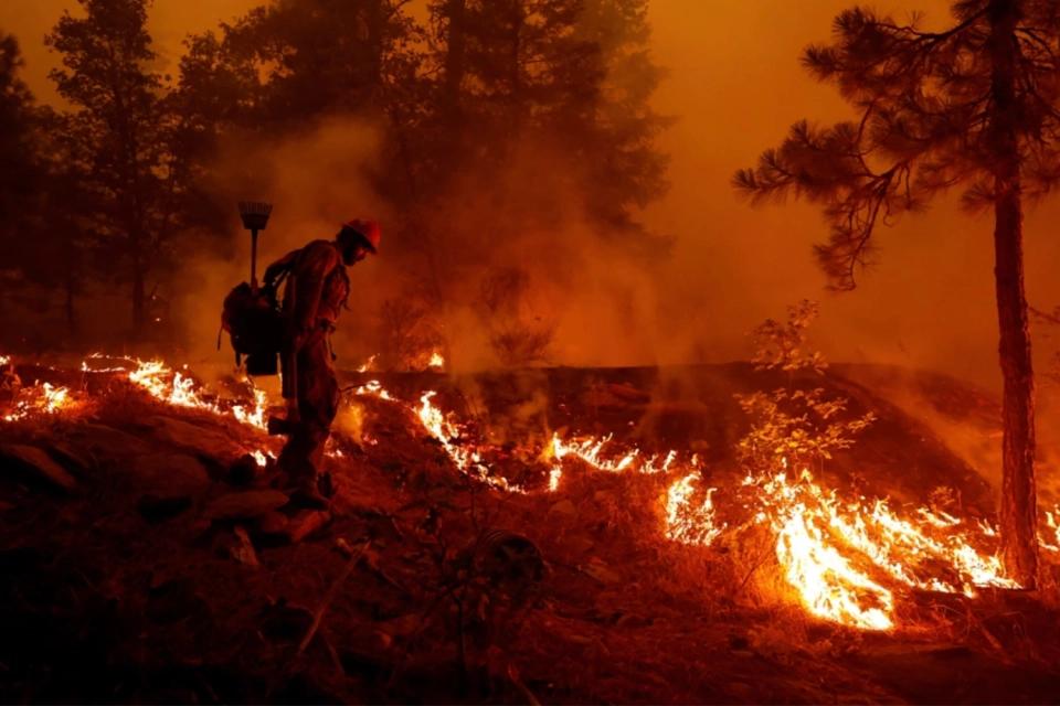 Climate Catastrophe